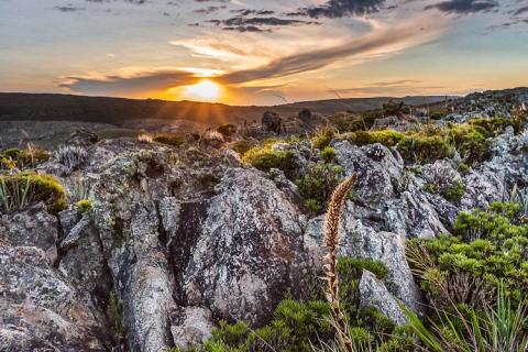 Campos Rupestres do Ermo das Gerais. Parque Nacional Serra do Cipó