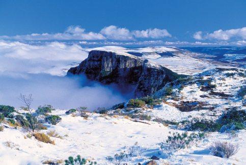São-Joaquim-National-Park-Santa-Catarina