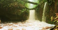 Cachoeira do Santuário 29_Chico Batata